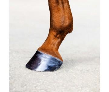 Gleam-Hoof Oil for Horses