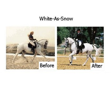 White-As-Snow Horse Supplement